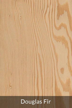 Douglas Fir Sample